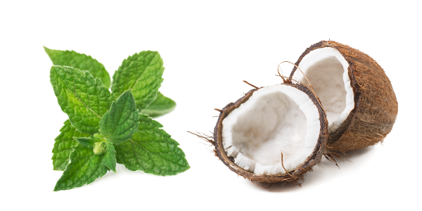 Image of peppermint leaves and a coconut cut in half
