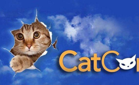 Cat Con