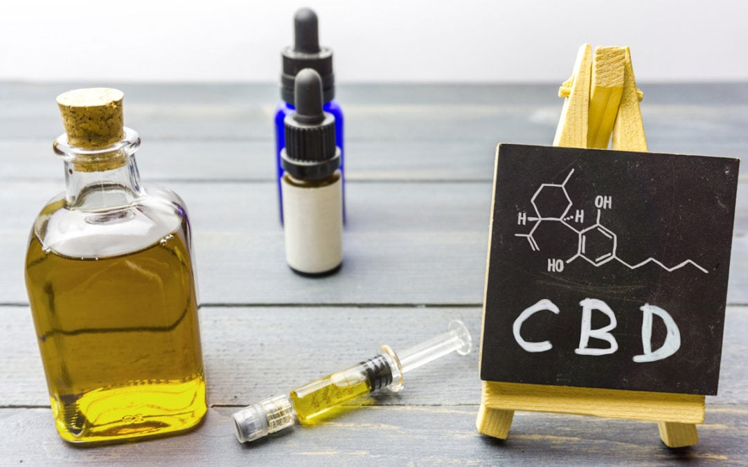 What Is Water Soluble CBD And Is It Really Beneficial For Pets?