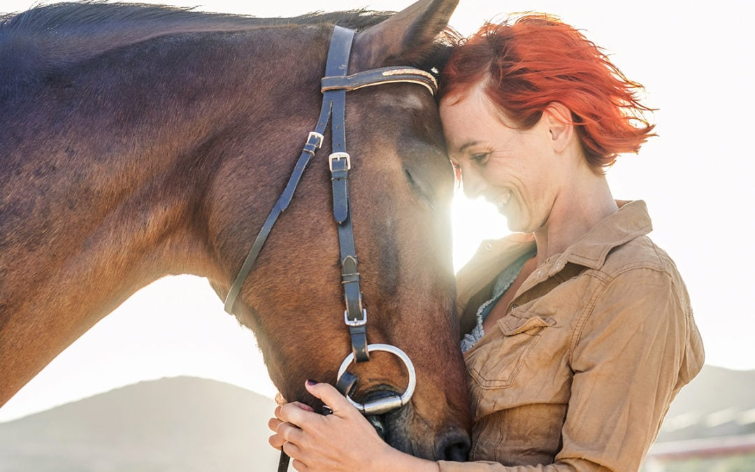 Whoa, Nelly! Treatibles Can Help Horses, Too