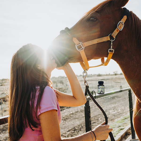 Image of woman kissing her horse on the nose with sunlight in the background.