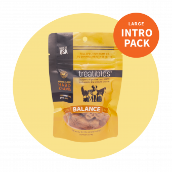 Intro Pack Balance (Pumpkin Flavor) Hard Chews - 4 mg CBD - For Dogs
