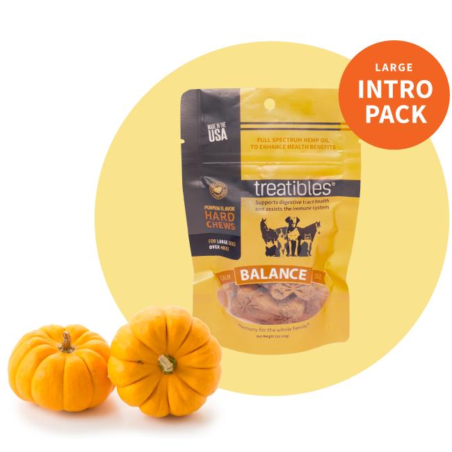 Intro Pack bag of Treatibles Balance (pumpkin) Hard Chews for large dogs featuring Organic Full Spectrum Hemp CBD Oil