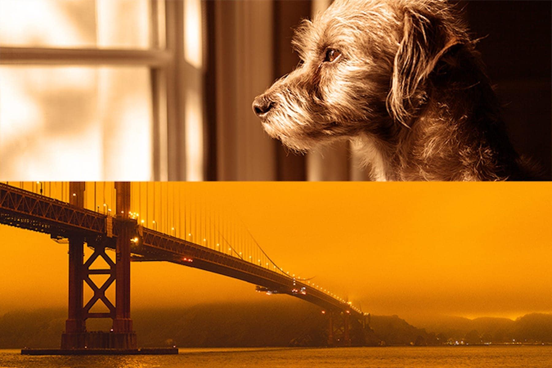 eery image of orange smoke filled sky over the Golden Gate Bridge