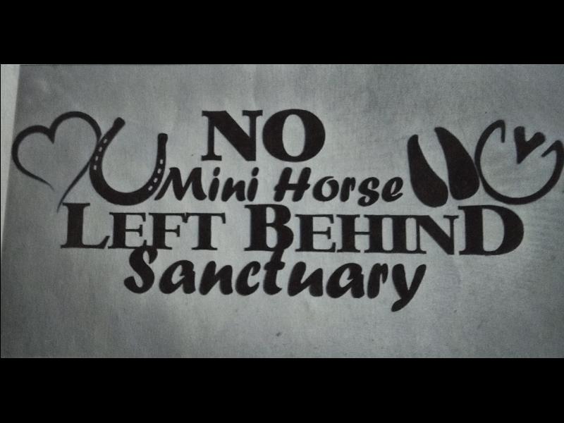 No Mini Horse Left Behind Sanctuary
