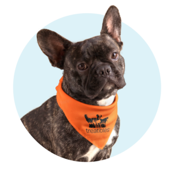 Treatibles Pup Bandana Orange
