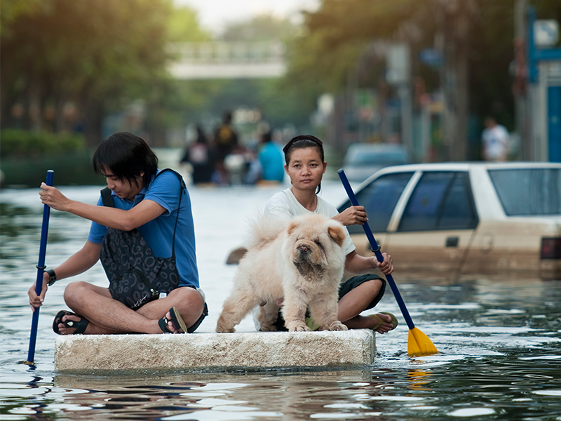 Two people row their dog to safety on a raft following a flood