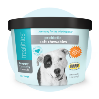 Image of aqua canister of Treatibles Happy Tummy Probiotic Soft Chewables CBD-free for Dogs featuring a white dog with a circle of black fur around his right eye.